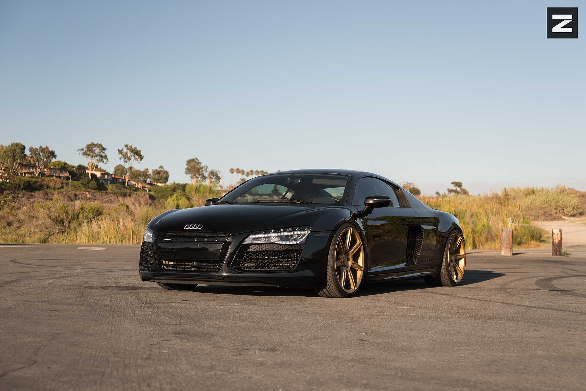 Audi R8 Gen 1 Black Gold ZS07
