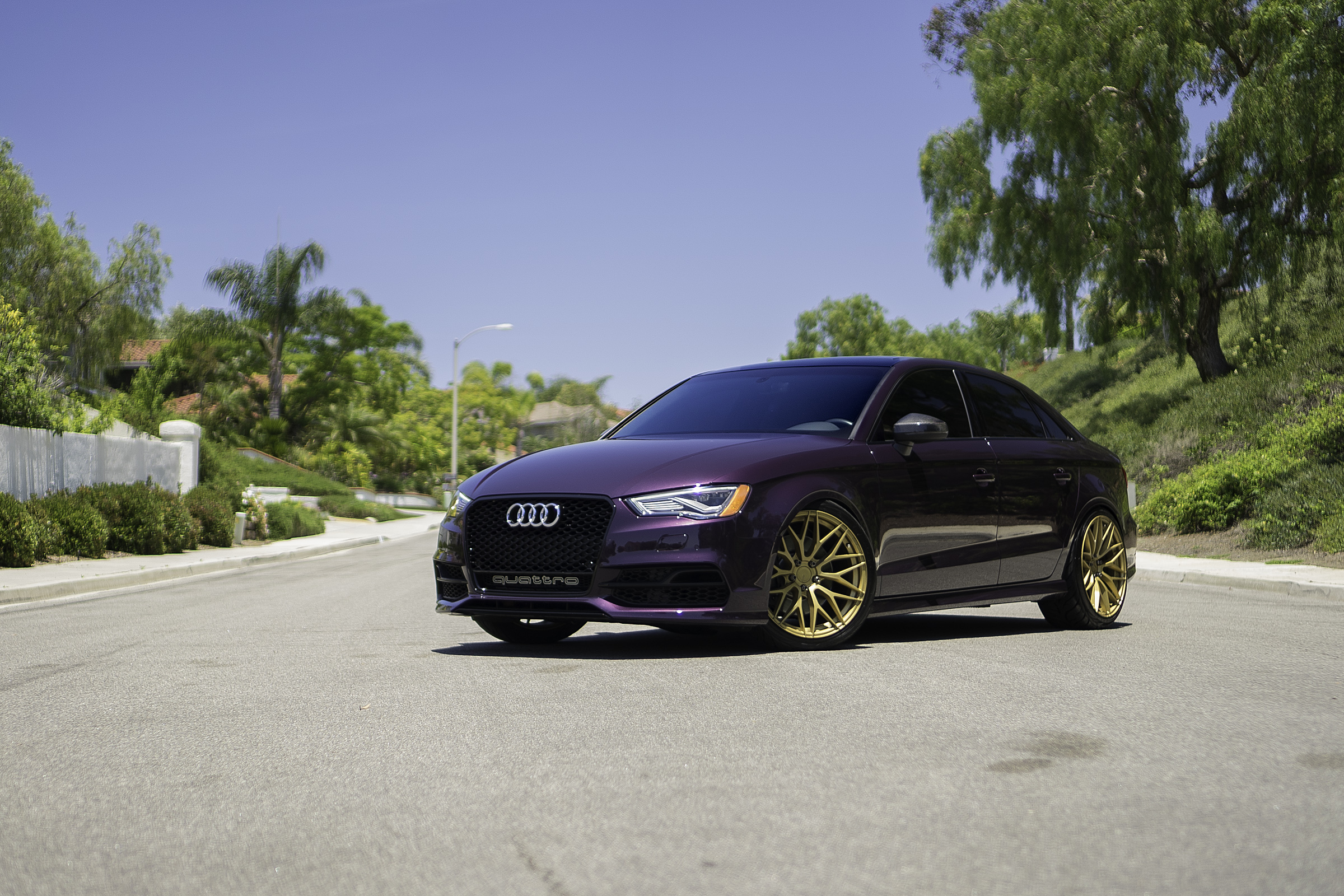 Audi S3 Purple Gold ZF01