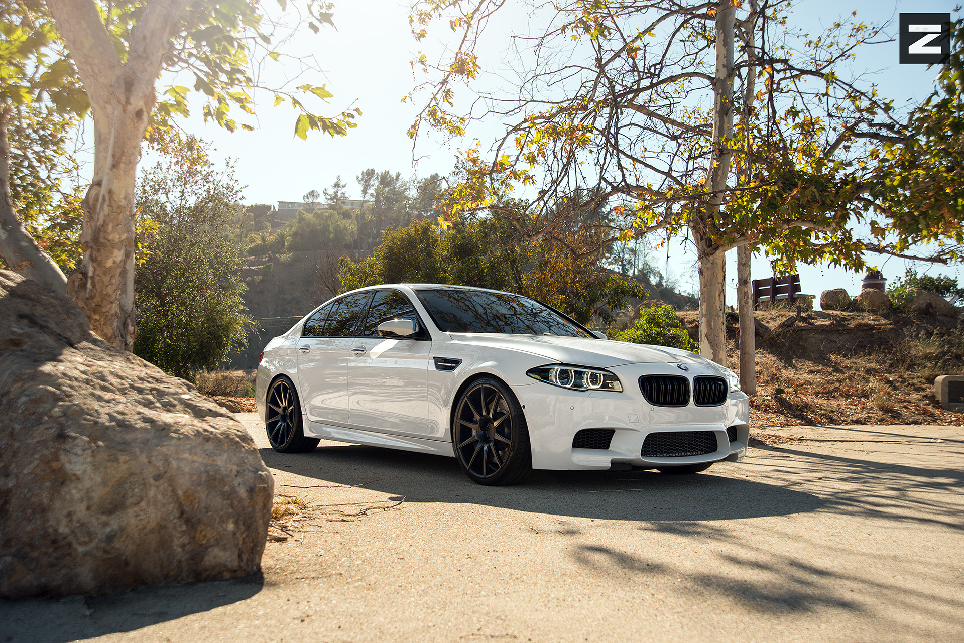 BMW F10 M5 White Black ZS03