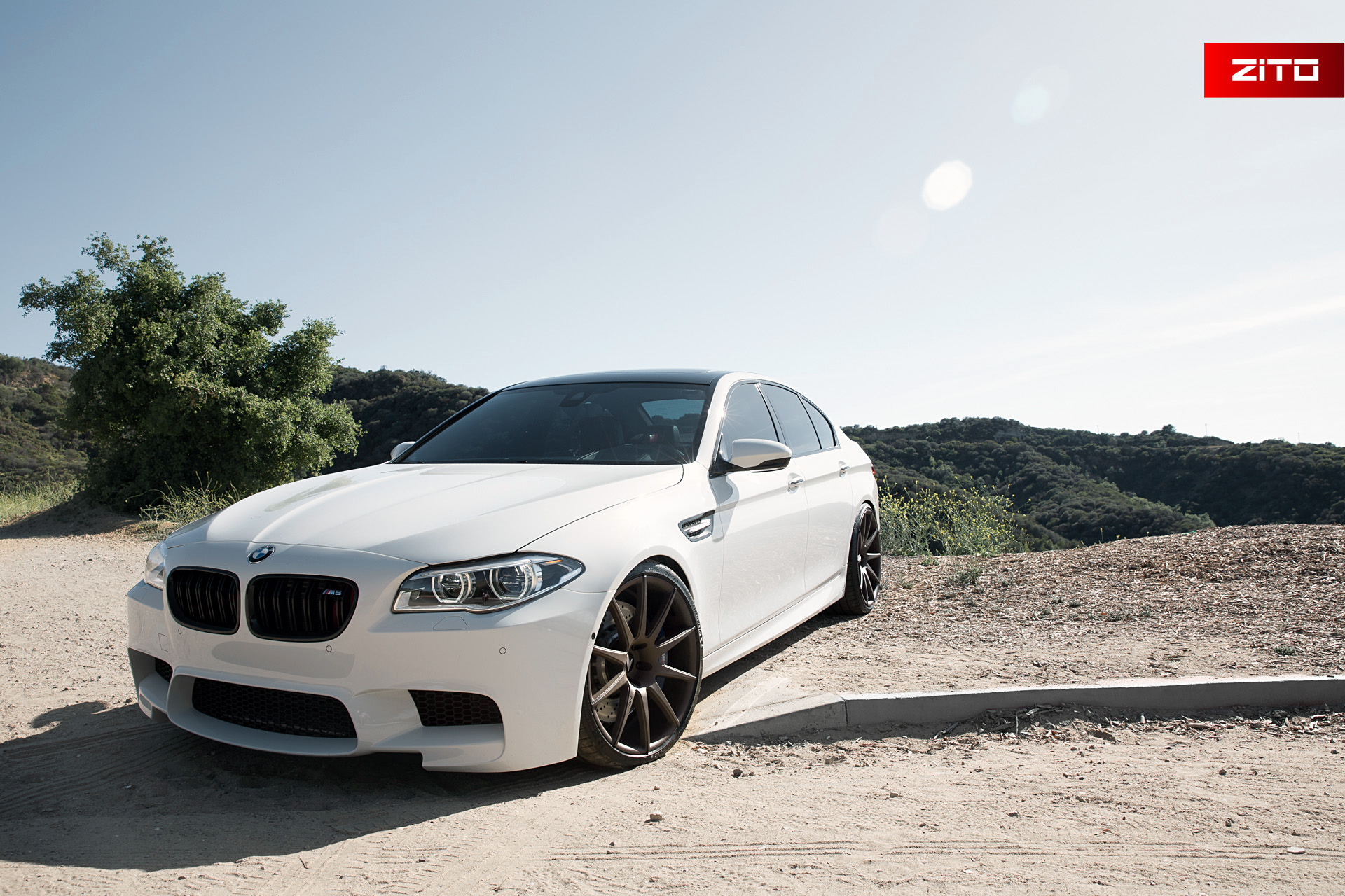 BMW F10 M5 White Bronze ZS03