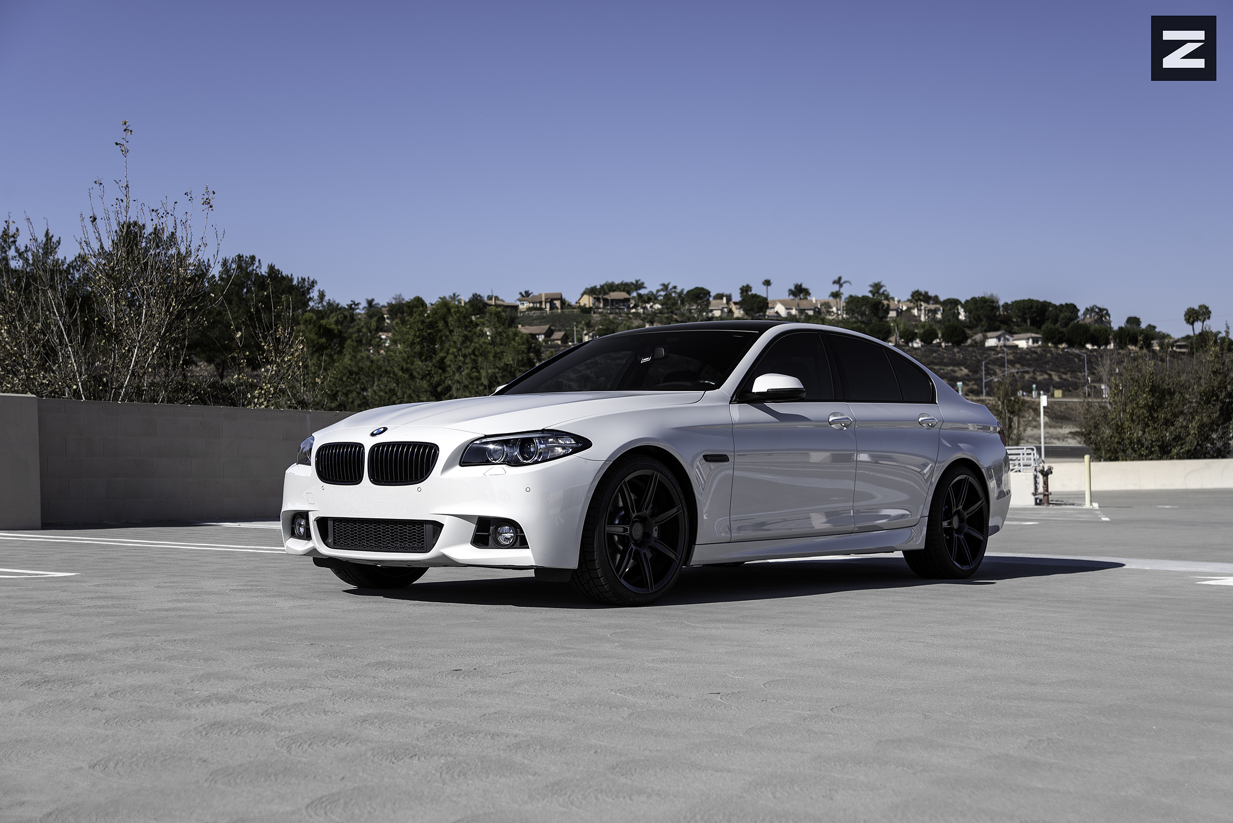 BMW F10 White Black ZS07