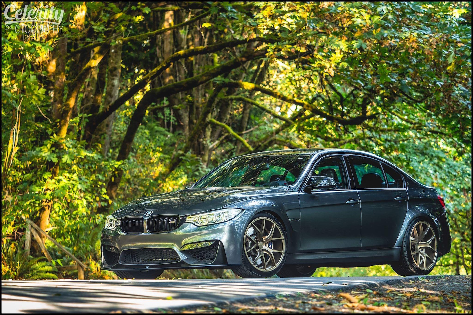 BMW F80 M3 Grey Bronze ZS05