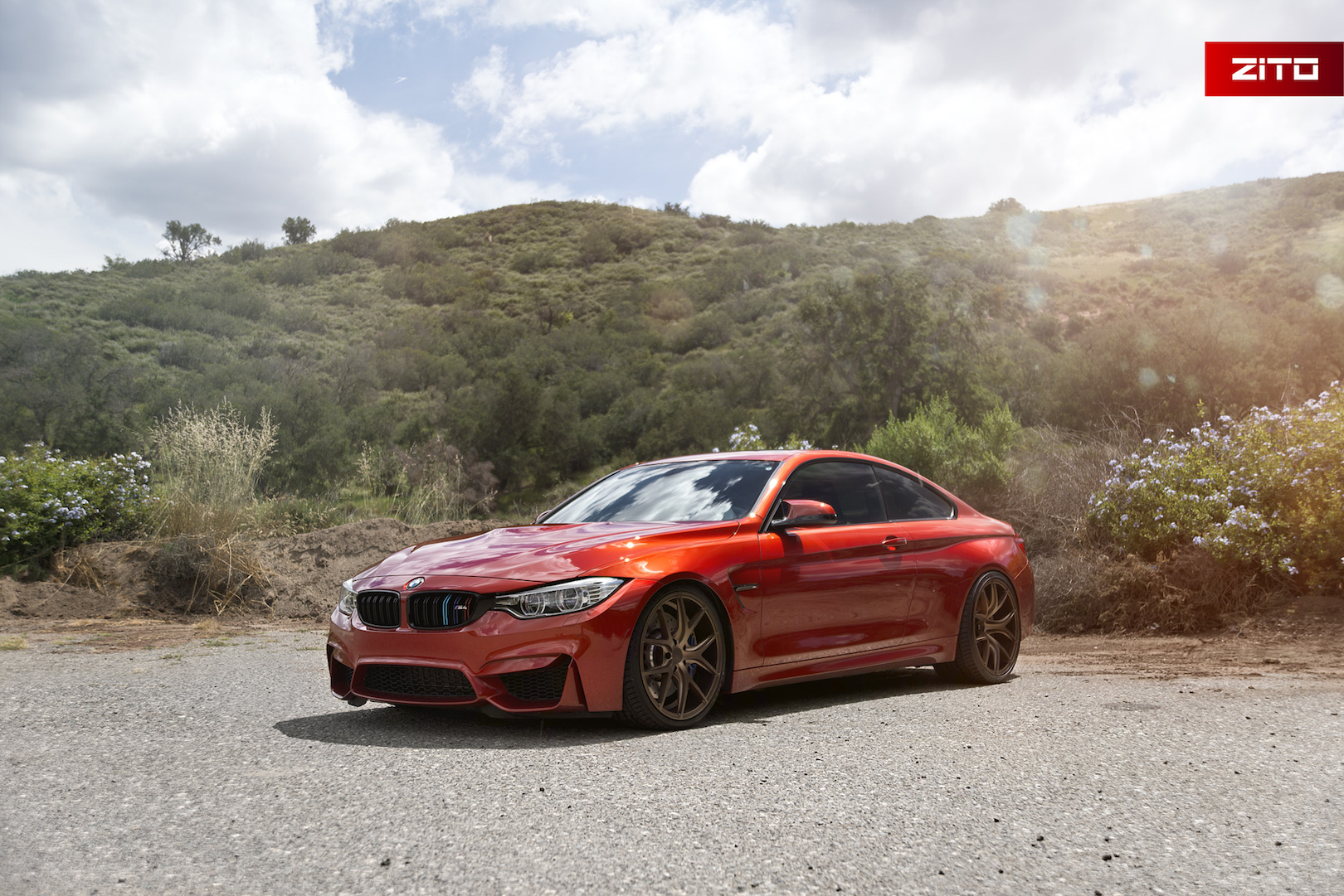 BMW F82 M4 Orange Bronze ZS05