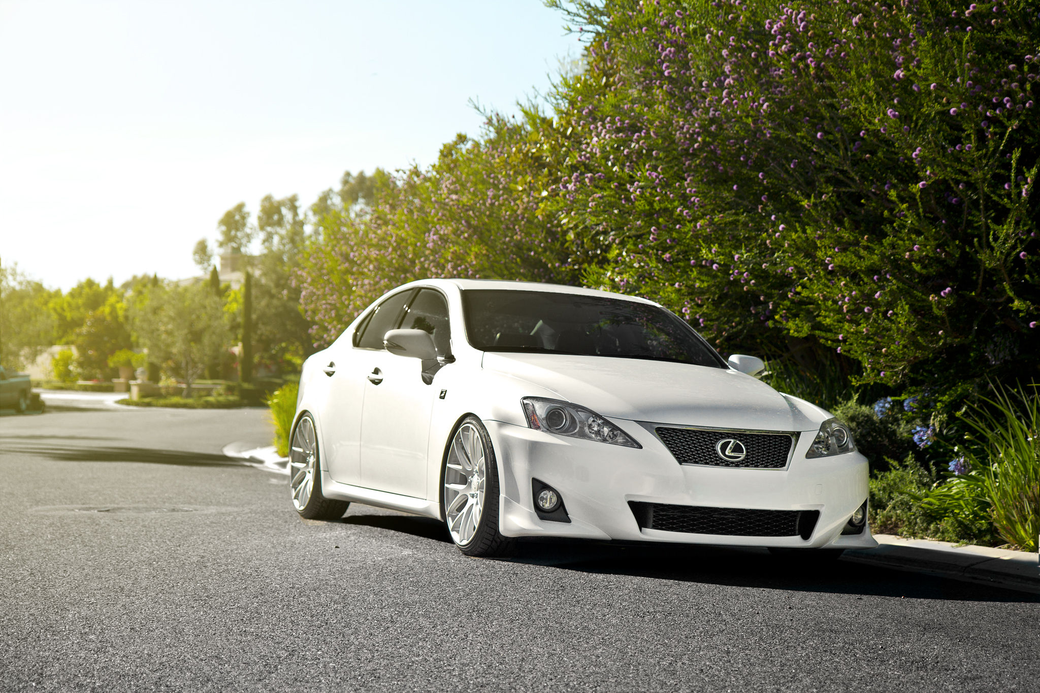 White Lexus IS250